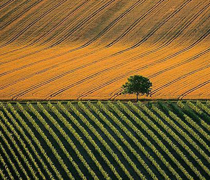 Agricultural Land Act Serbia
